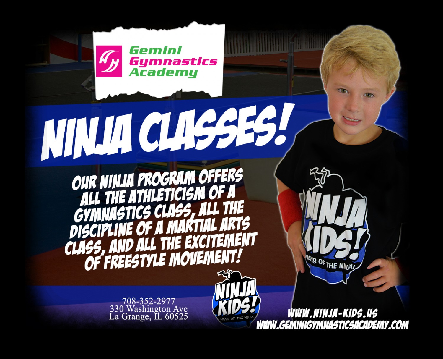 Full_Custom_-_Ninja_Kids-_Gemini