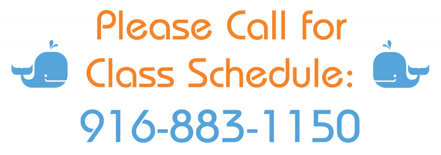 Please_Call_for_Class_Schedule-